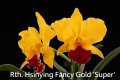 Rth. Hsinying Fancy Gold 'Super' SM/TOGA